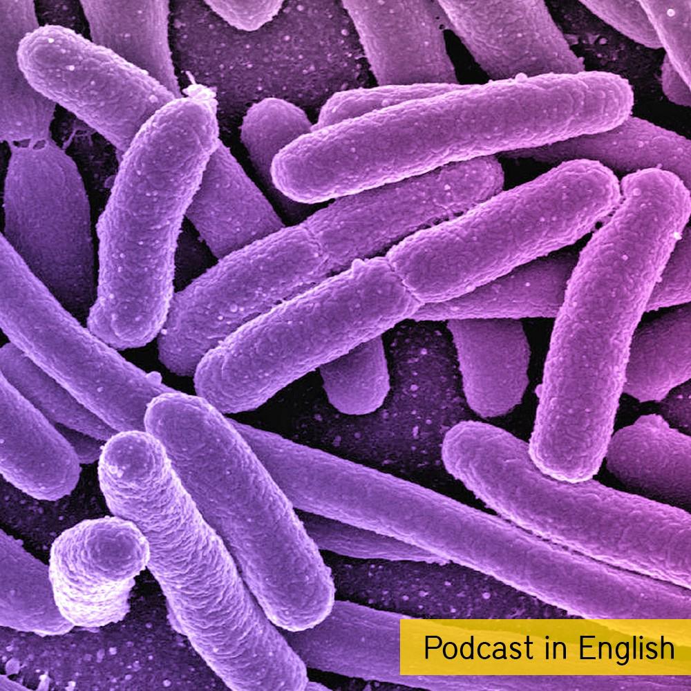 180528_AirCampus_Bacteria